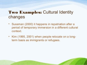 cultural-identity-and-intercultural-business-communication-21-638.jpg